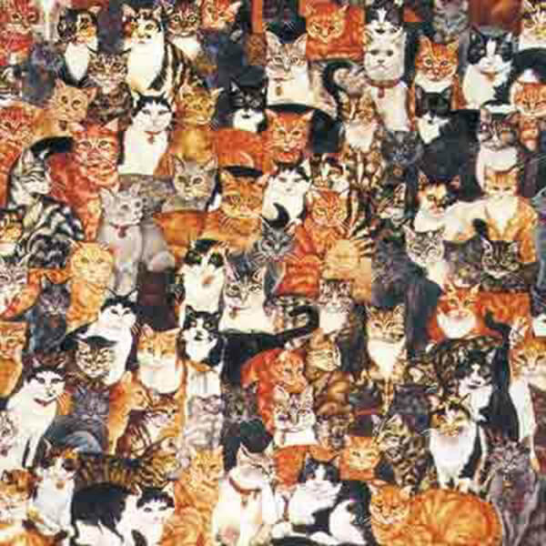 World's Most Difficult Cat Jigsaw Puzzle #jigsaw #puzzle